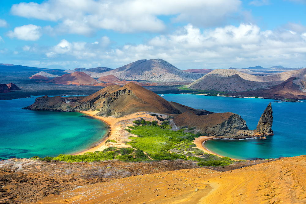 Galapagos Collette Tours