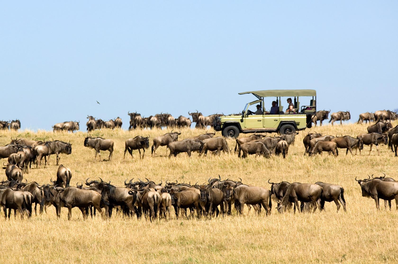 Tanzania Zegrahm