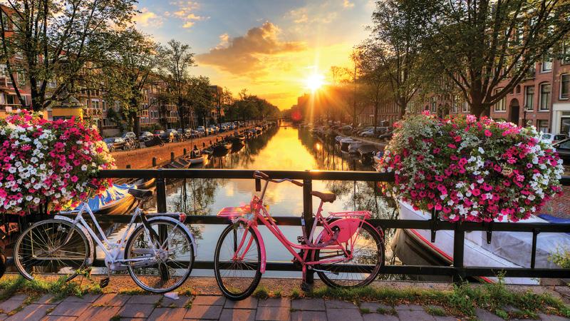 Collette Tours Netherlands